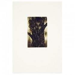 Duch stromu